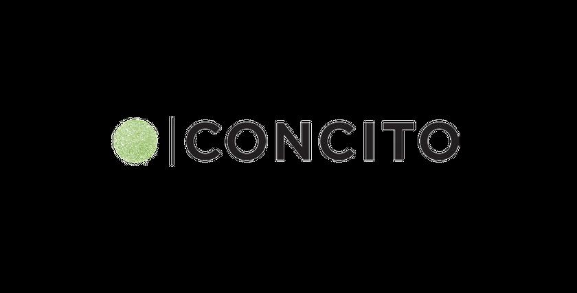 Concito Bæredygtigt Erhverv