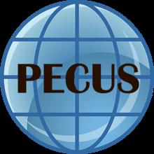 PECUS INTERNATIONAL A/S